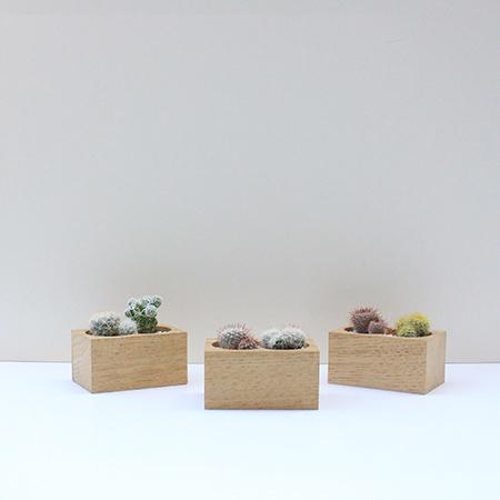 wood_003